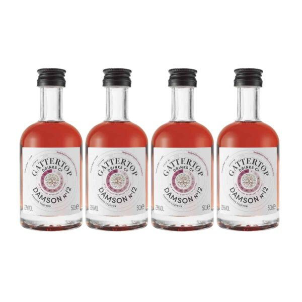 Damson No 12 Vodka Mini Bottles